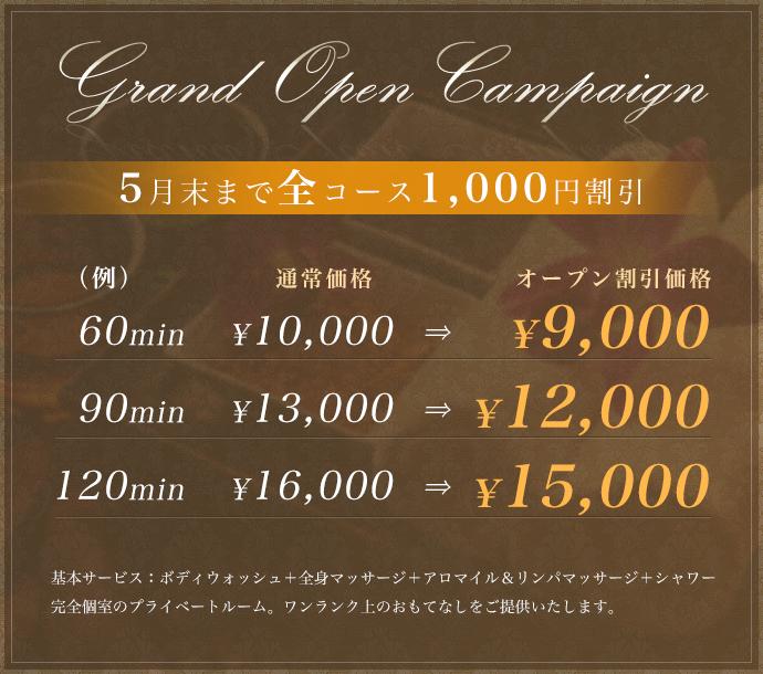 Grand Open Campaign 2月末まで全コース1,000円割引