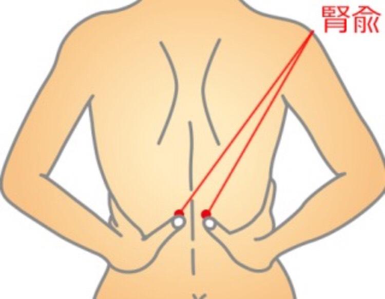 腰の痛みに効果的なツボ腎兪