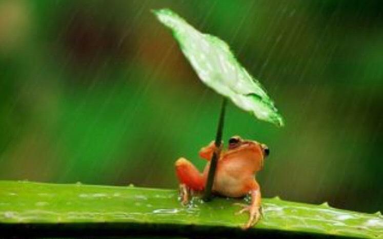 雨宿りは新宿PARTIREへ