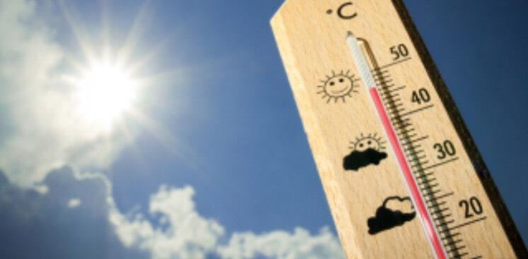 急激な真夏日には体温調節をしよう