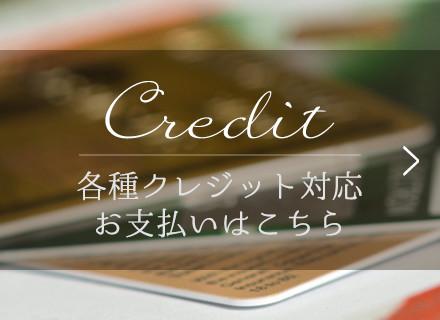 各種クレジット支払い対応