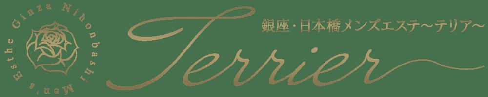 銀座・日本橋メンズエステ【Terrier〜テリア〜】で20代〜30代の日本人セラピストによる丁寧なアロママッサージをお楽しみください。